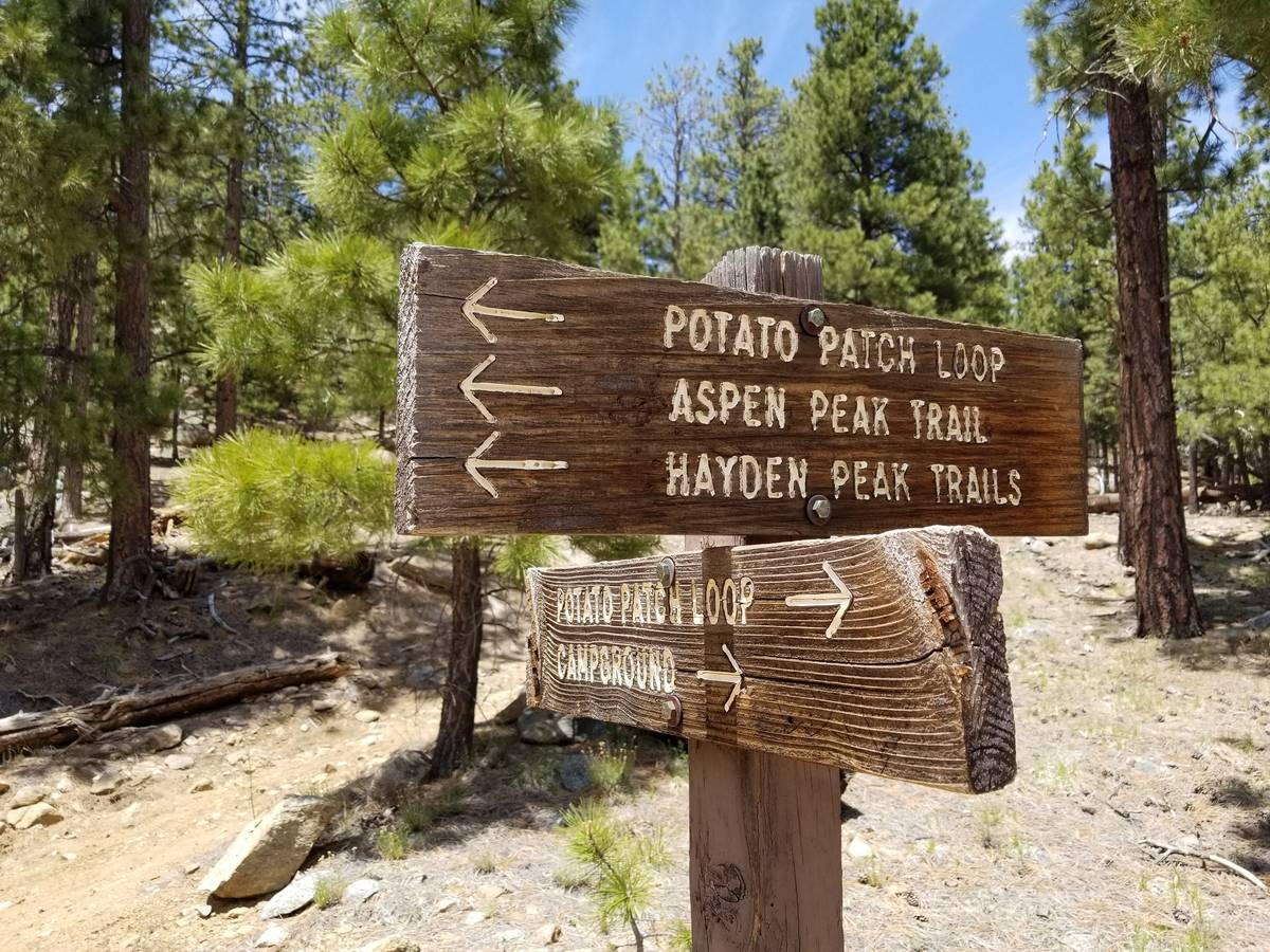 A sign keeps hikers on the Potato Patch Loop and points toward trails that will take trekkers u ...