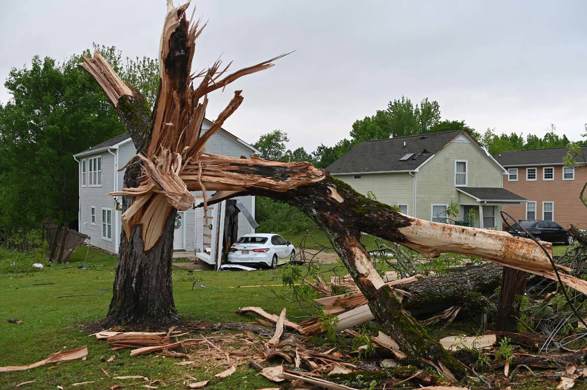 A downed tree and damaged homes are seen along Elvis Presley Drive in Tupelo, Miss., Monday, Ma ...