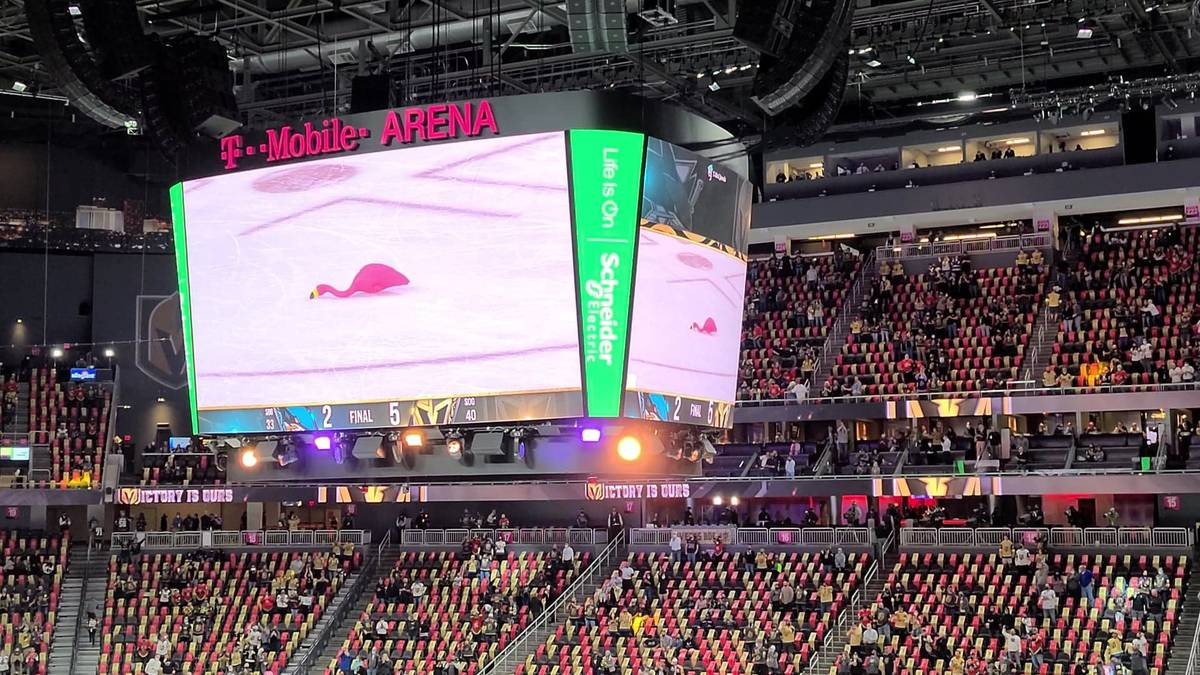A Victory Flamingo captured on the big screen at a Golden Knights game. (Drew Johnson)