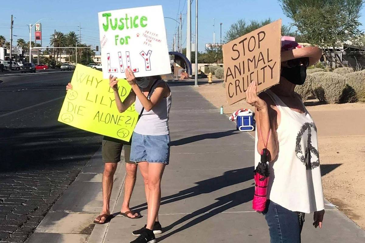 Protesters gather in early September 2020 to ask for felony charges against an owner who they s ...