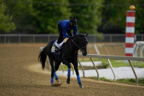 Exercise rider Humberto Gomez takes Kentucky Derby winner and Preakness entrant Medina Spirit o ...
