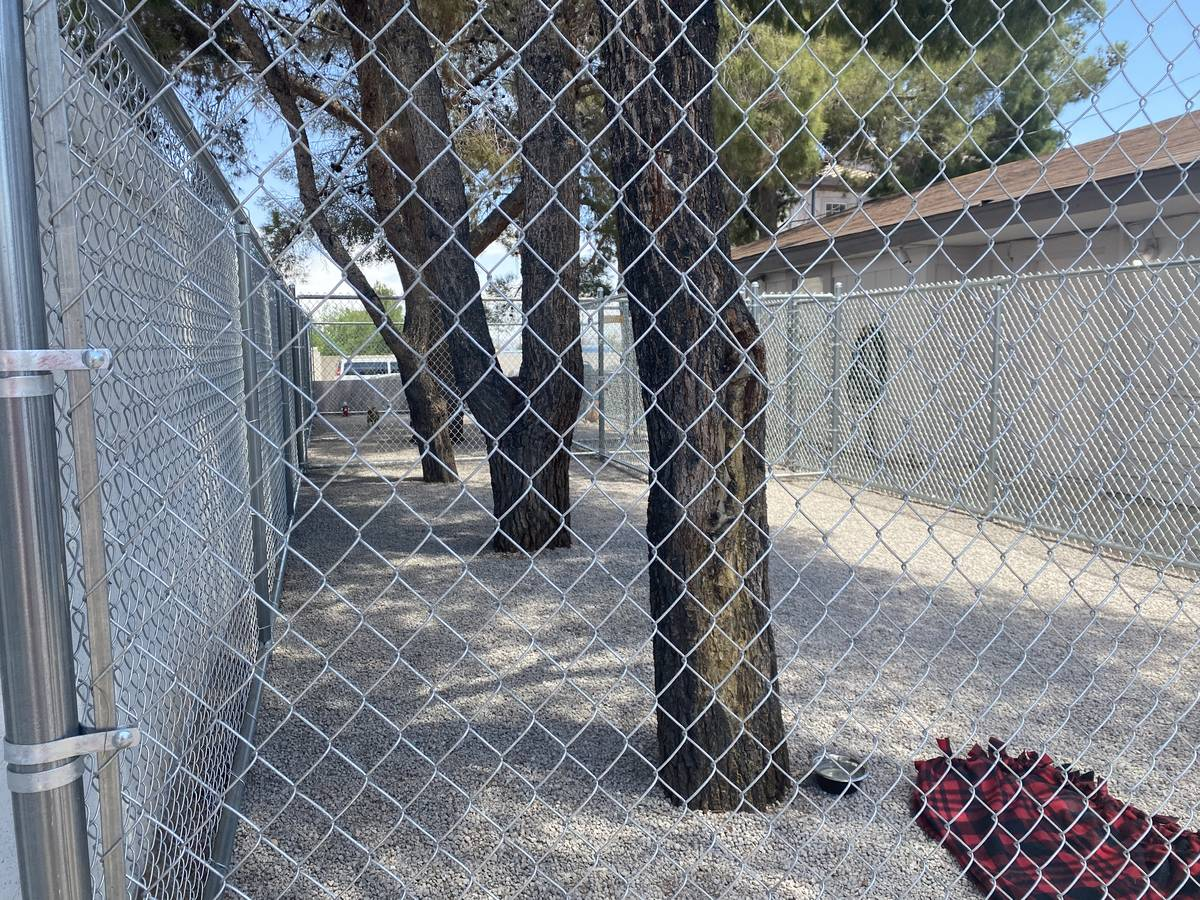 The landscaped yard of SafeNest's new confidential animal shelter is pictured on Wednesday, May ...