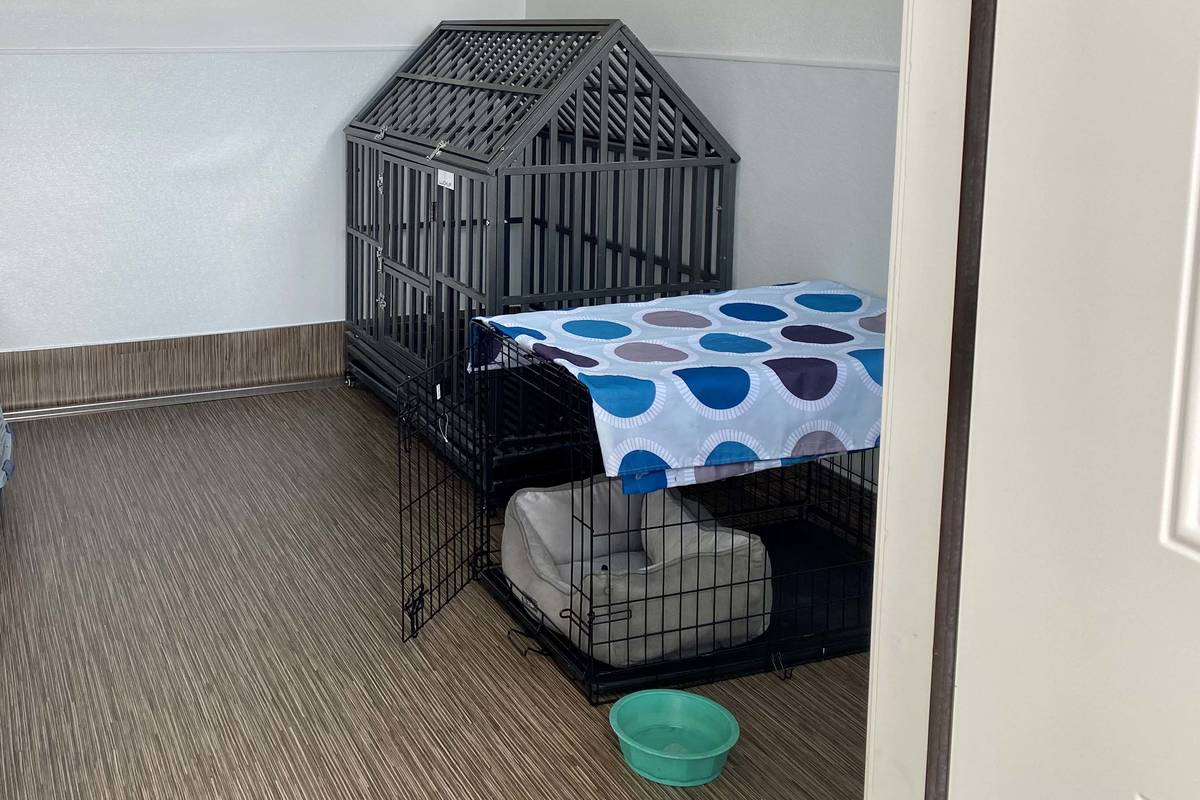 Animal crates are pictured on Wednesday, May 19, 2021, at SafeNest's new confidential animal sh ...
