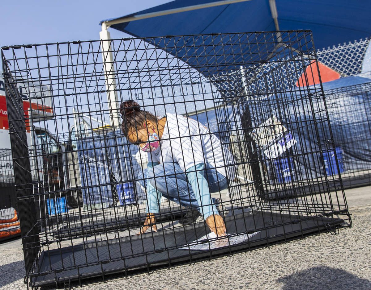 Ashley Carr, a volunteer, assembles a dog kennel at the Courtyard Homeless Resource Center, on ...