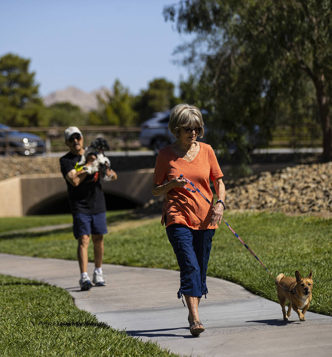 Carol Liberty walks her dog, Mikey, in Sun City Summerlin on Friday, May 28, 2021. (Chase Steve ...