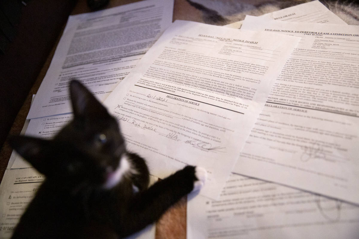 Nancy Williams' kitten climbs on a pile of eviction notices at her Siegel Suites apartment on T ...