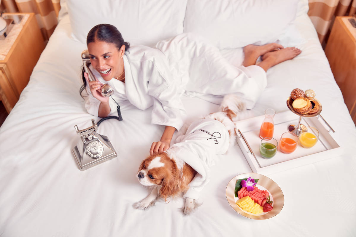 Encore has launched a new dog-friendly resort program. (Gary James)