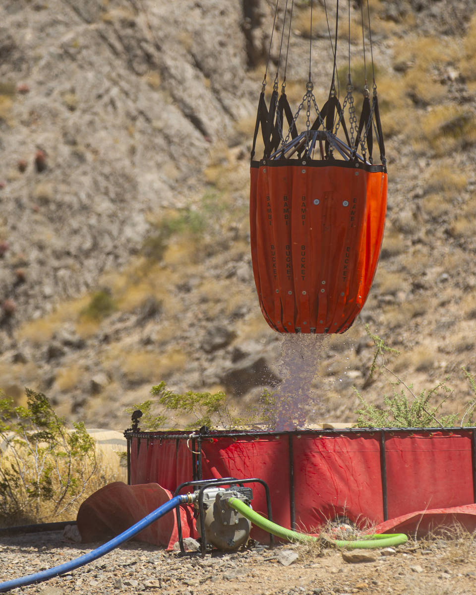 Rick Thielmann, chief pilot at the Nevada Department of Wildlife, releases water using a Òbamb ...