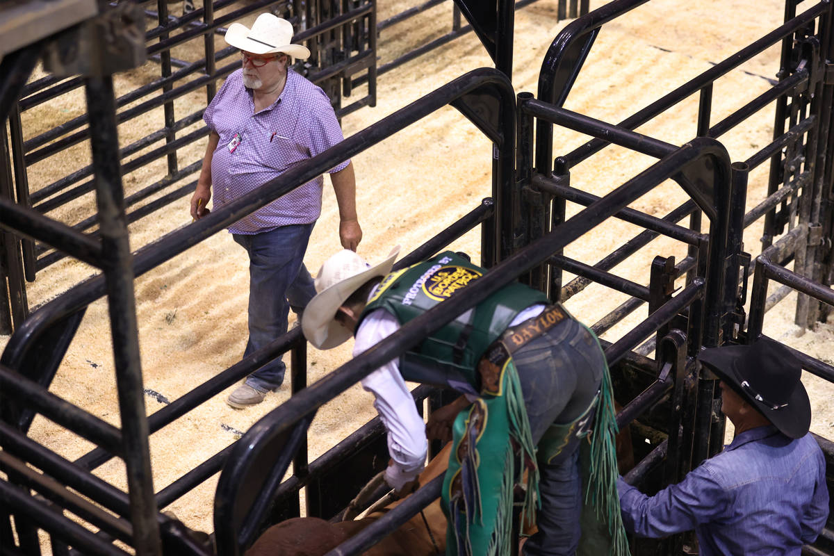 Former bullfighter Ted Groene works bull logistics behind the scenes during the Professional Bu ...