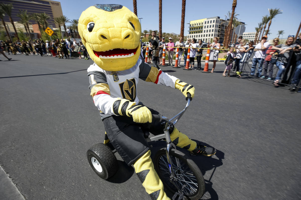 Vegas Golden Knights mascot Chance the Golden Gila Monster rides a tricycle as fans line outsid ...