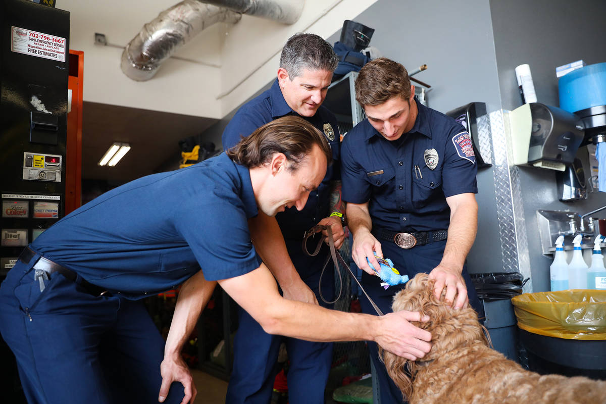 Tyler McFate, Station 1A operations chief, from left, plays with Murphy, a golden doodle, next ...