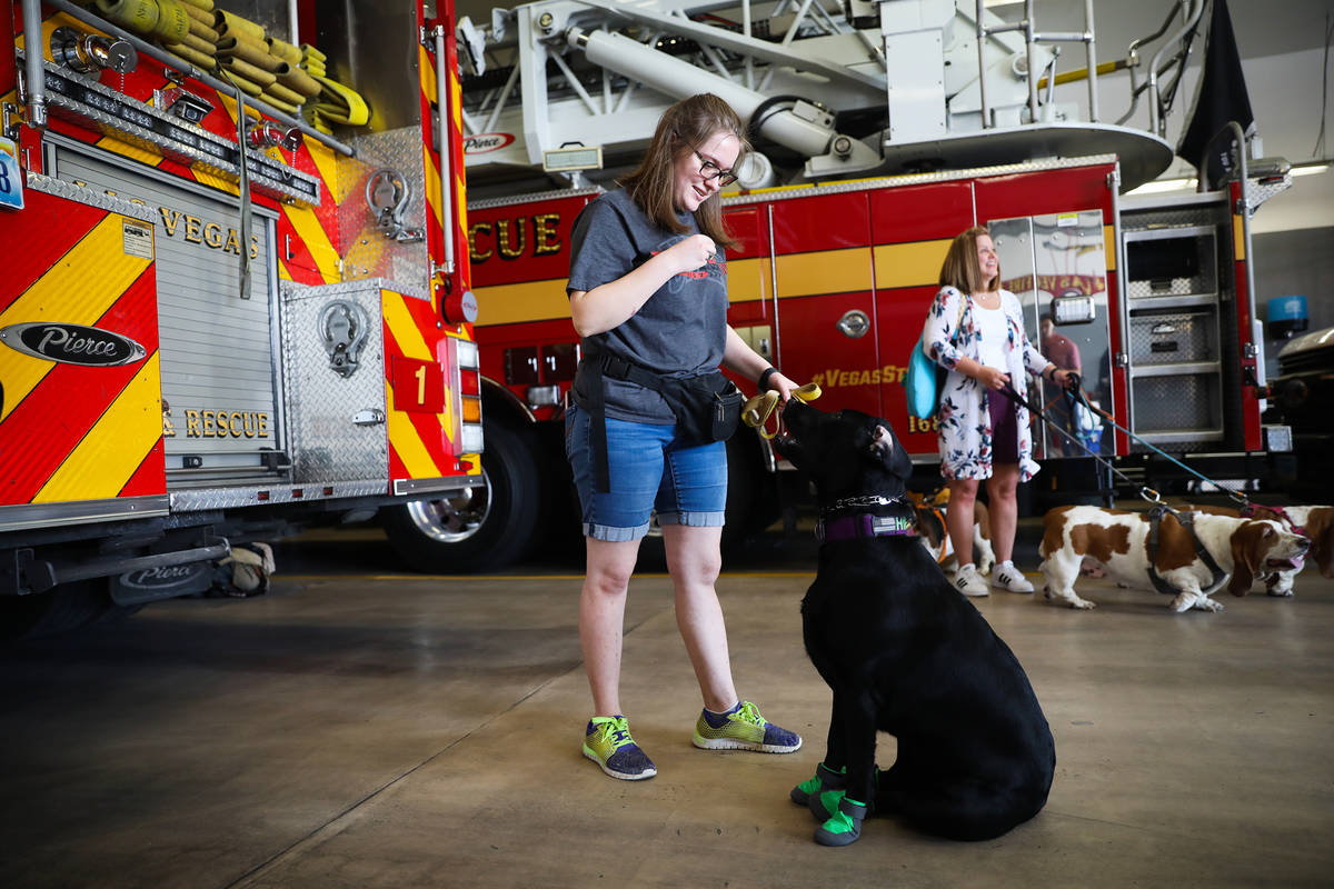 Faith Nault plays with her lab Hippo at an event to teach the public about animal safety in the ...