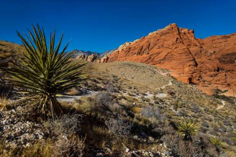 Red Rock Canyon on Tuesday, Jan. 5, 2021, in Las Vegas. (Benjamin Hager/Las Vegas Review-Journa ...