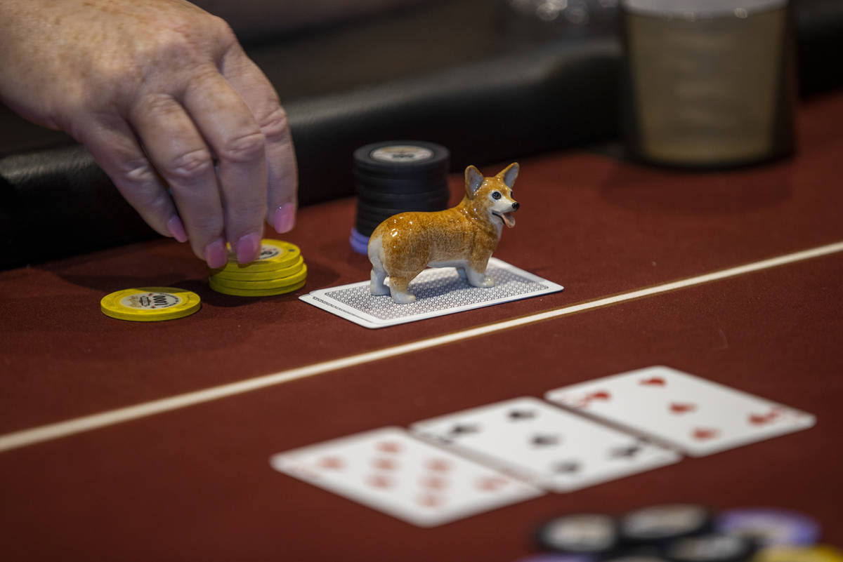 A lucky charm dog sits atop a hand as players compete in the $350 buy-in Ladies International P ...