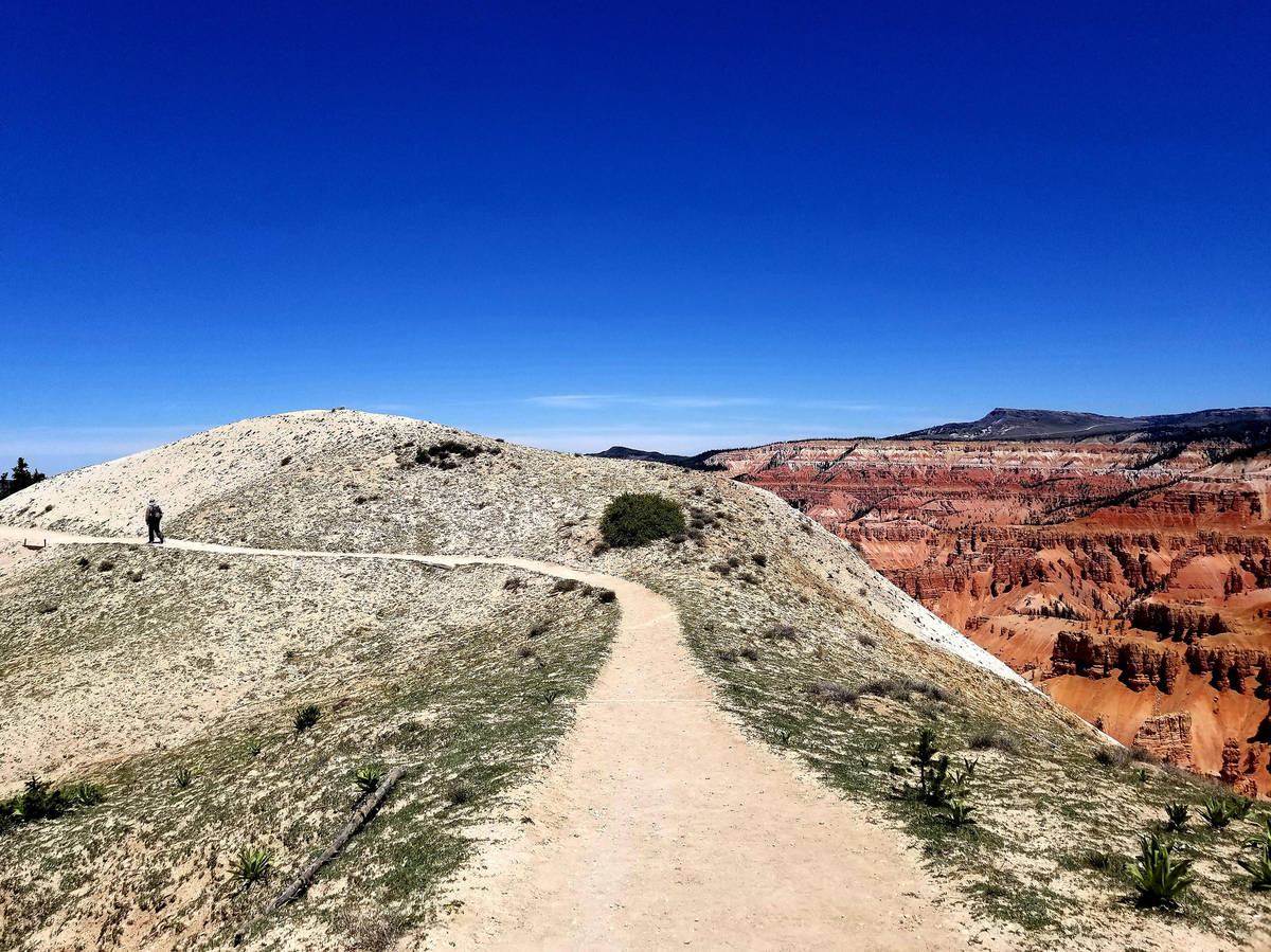 A hiker walks along the Ramparts Trail, where wildflowers bloom, bristlecone pines twist and po ...