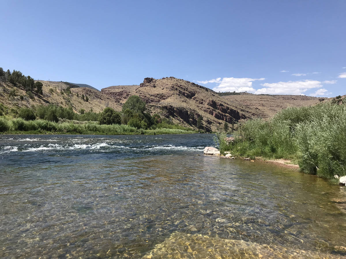 The Green River below the Flaming Gorge Dam is a fly-fisherman's paradise. (Deborah Wall/Las ...