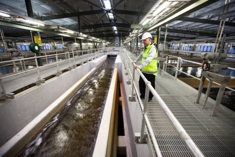 Desalination is used worldwide, from Israel to Australia. Here, project engineer Mike Watts wat ...