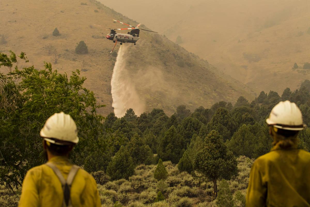 A firefighting chopper  drops h2o  arsenic  the Tamarack Fire burns astir   Topaz Lake, Nev., Frida ...