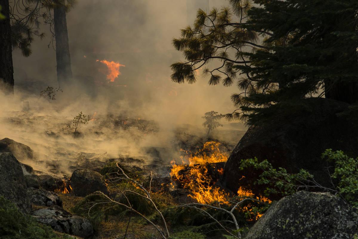 The Tamarack Fire burns astir   California State Route 88 adjacent   Alpine Village, Calif., Friday, J ...