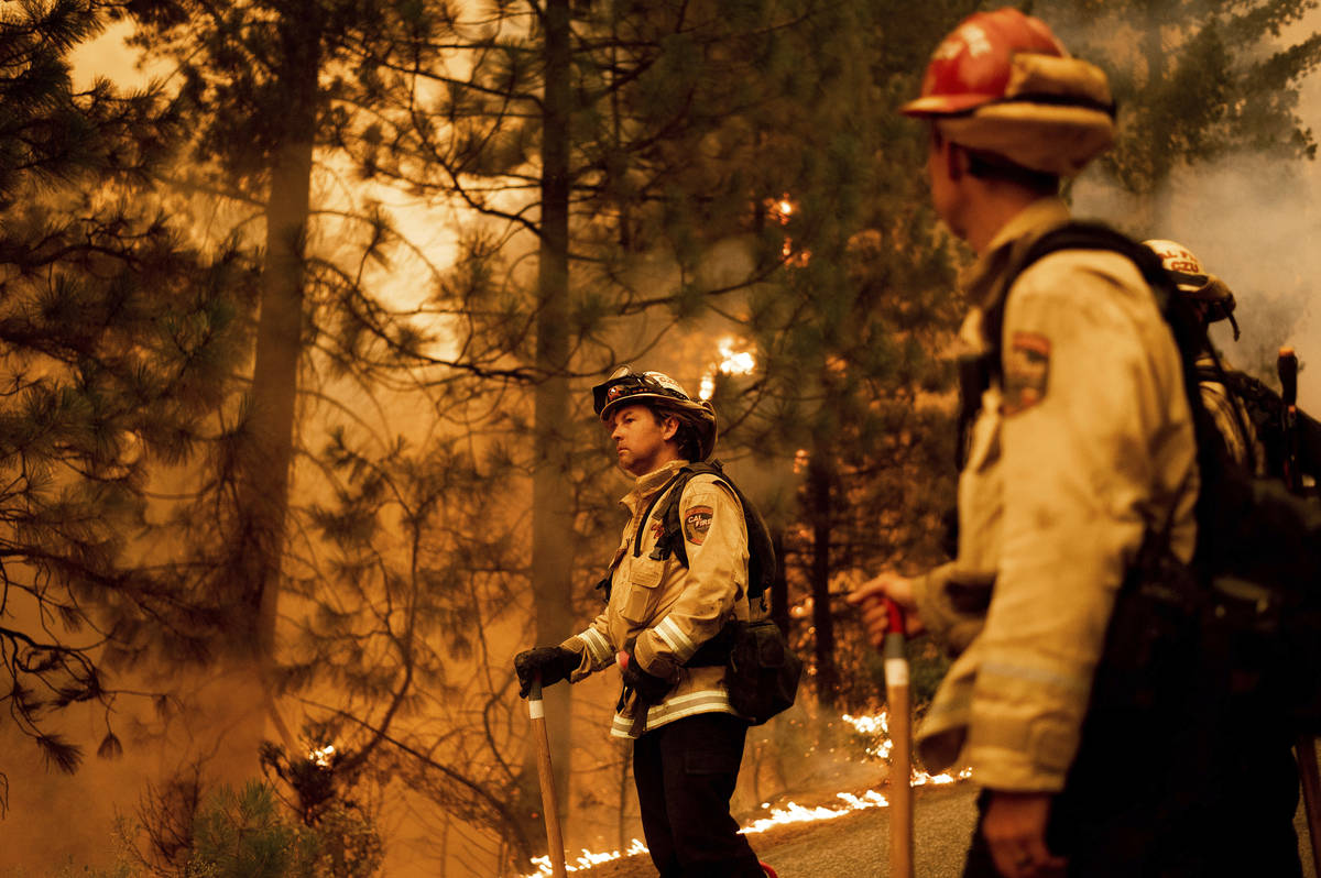 Firefighter Jason Prado monitors flames as his crew burns vegetation to stop the Dixie Fire fro ...