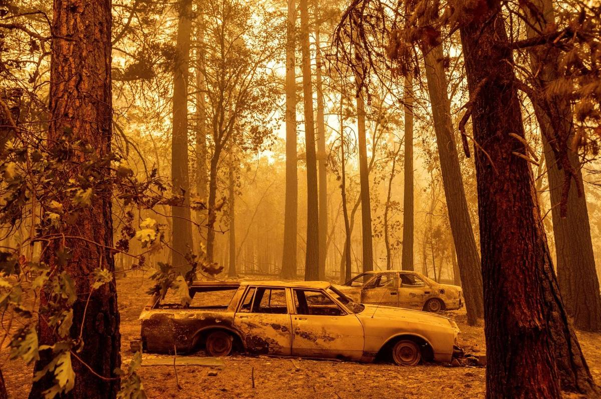Following the Dixie Fire, scorched cars are seen in a clearing in the Indian Falls community of ...