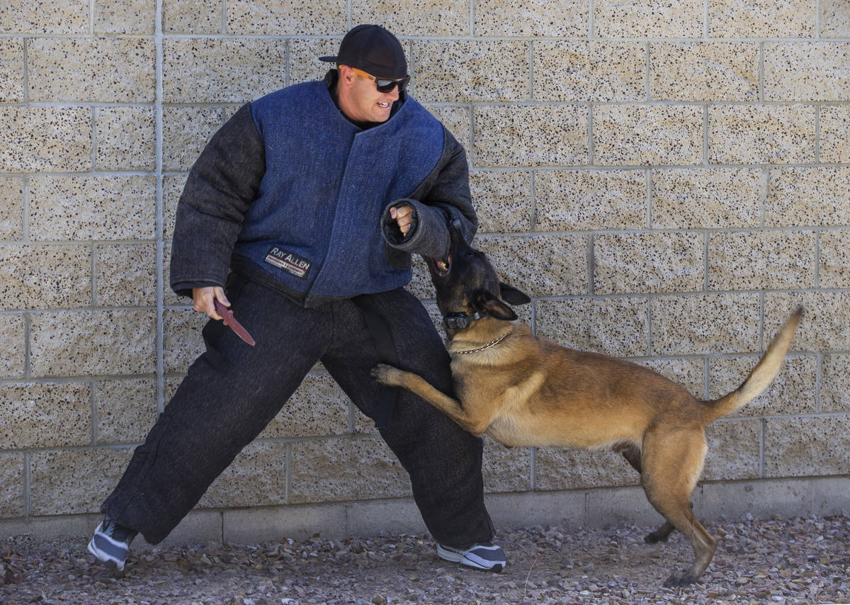 """Las Vegas Metropolitan Police officer Shad Rollo as a """"bad guy with a knife"""" is attac ..."""