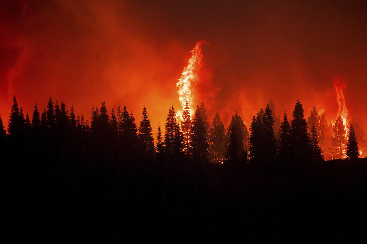 Flames from the Dixie Fire crest a hill in Lassen National Forest, Calif., near Jonesville on M ...