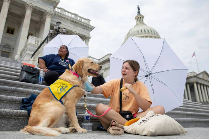 Casey Long and Adrienne, a service dog in training, sit on the steps of Capitol Hill in Washing ...