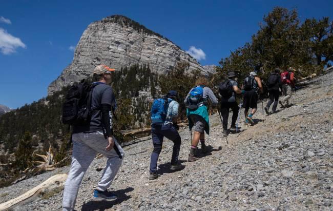 52 Peaks hikers make their along Fletcher Peak at Mount Charleston on Tuesday, May 18, 2021, ne ...