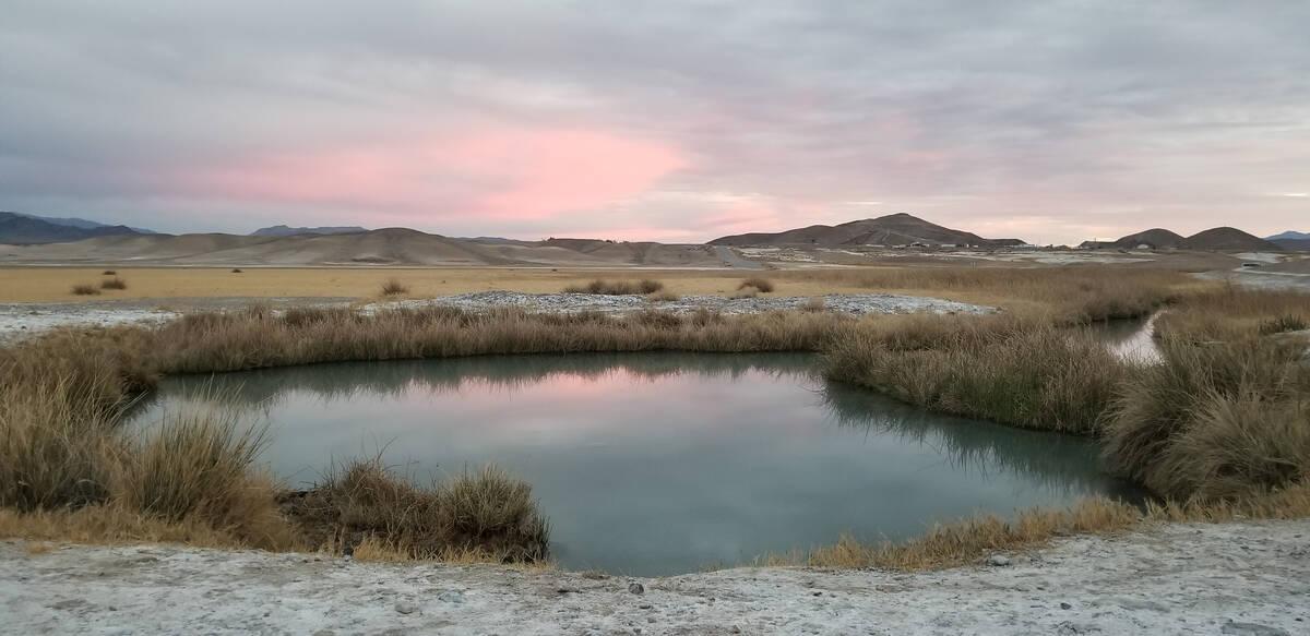 Berendam di tengah kemegahan Gurun Mojave di mata air dekat Tecopa, California (Sarah Ja ...