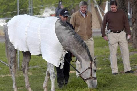 Trainer Michael Dickinson, center, and owner Ron Winchell, right, look over Kentucky Derby entr ...