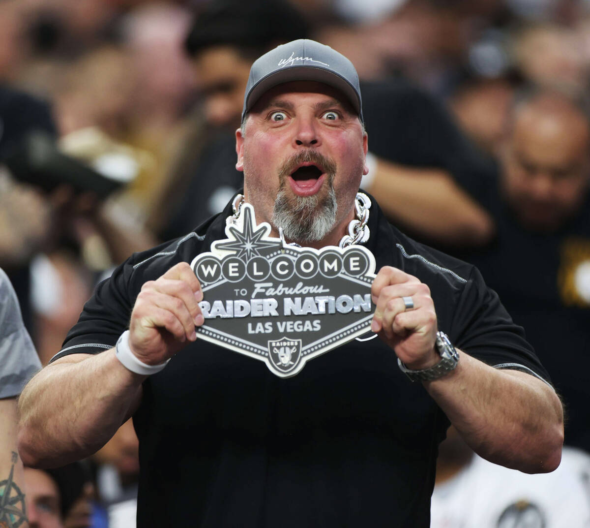 Raiders fans during an NFL football game between the Raiders and Baltimore Ravens at Allegiant ...