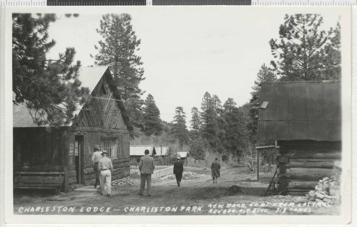 A black and white postcard of the Charleston Lodge and Charleston Park. The inscription on the ...