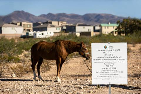 A horse grazes near a sign at East Chartan Avenue and South Placid Street for a proposed zone c ...