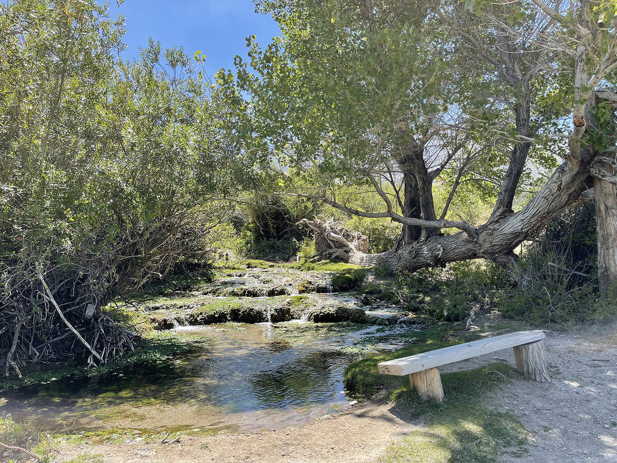 The 1.36-acre property in the Cold Creek subdivision in the Toiyabe National Forest has a creek ...