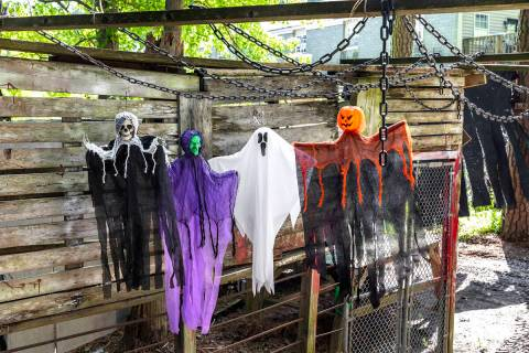 Ghouls, ghosts and witches measuring 30 to 36 inches are an inexpensive addition to any yard. ( ...